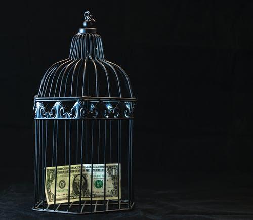 peníze v kleci